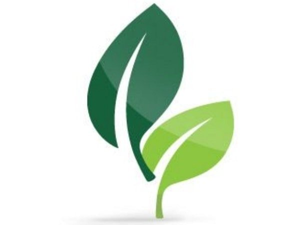 Green Leafs symbolizing green building projects