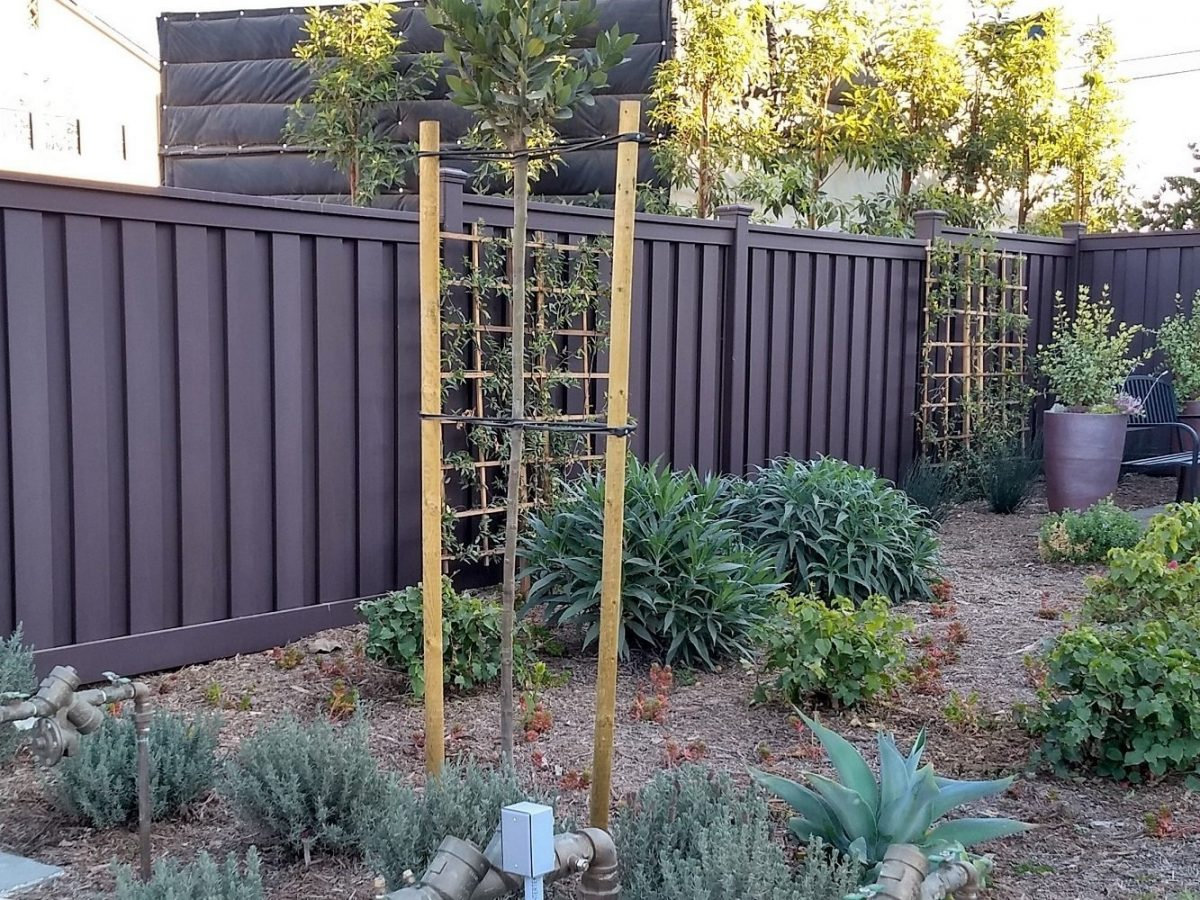 A Trex Fence behind a landscaped yard with low moisture plants.